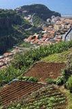 Vogelperspektive des Madeira-Badeortes und des Ozeans Lizenzfreie Stockfotografie