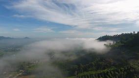 Vogelperspektive des Morgennebels Stockbild