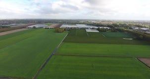 Vogelperspektive des natürlichen Feldes der Landwirtschaft, die Niederlande stock video