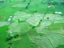 Vogelperspektive des Reisfelds in Pai, Mae Hong Son, Thaiiland Stockfotografie
