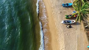 Vogelperspektive des sandigen Strandes mit Bäumen, der durch die Meereswellen an einem sonnigen Tag in Sri Lanka gewaschen wird stock video