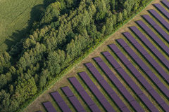 Vogelperspektive des Solarkraftwerks Stockfotografie