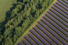 Vogelperspektive des Solarkraftwerks Stockbilder