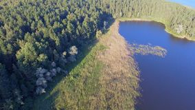 Vogelperspektive des Stauwassers, Forest And Reeds On The-Insel auf See Seliger, Russland stock footage