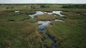 Vogelperspektive des Sumpfs landet mit weißem Reihernistplatz stock footage