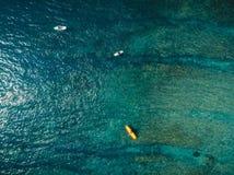 Vogelperspektive des Surfers und des blauen Ozeanwassers Surfen in Ozean lizenzfreie stockfotografie