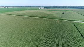 Vogelperspektive, die über Mais-und Sojabohnen-Felder und Bauernhöfe Smyrna Delaware fliegt stock footage
