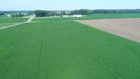 Vogelperspektive, die über Mais-und Sojabohnen-Felder und Bauernhöfe Smyrna Delaware fliegt stock video