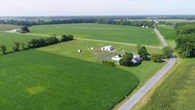 Vogelperspektive, die über Mais-und Sojabohnen-Felder und Bauernhöfe Smyrna Delaware fliegt stock video footage