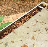 Vogelperspektive einer Dachspitzengosse, die mit Blättern verstopft lizenzfreie stockfotografie