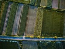 Vogelperspektive einer Landstraße mit bunten landwirtschaftlichen Feldern im Frühjahr - Deutschland Stockfotos