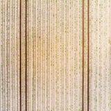 Vogelperspektive eines Feldes mit jungen Kartoffelpflanzen, geometrischer Effekt der frischen Pflugbahnen auf das Feld, abstrakte Lizenzfreie Stockfotos