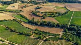 Vogelperspektive eines grünen Sommerweinbergs stockfotografie