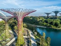 Vogelperspektive, Gärten durch die Bucht, Singapur Stockbild