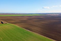 Vogelperspektive-Grün-Feld von oben Stockfotografie