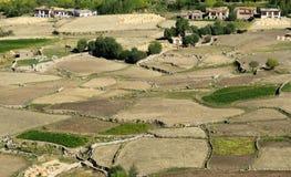 Vogelperspektive grünes ladakh landwirtschaftlicher Landschaft Lizenzfreie Stockfotos