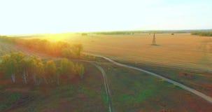 Vogelperspektive UHD 4K Mitten- in der Luftflug über gelbem ländlichem Feld und Schotterweg stock footage