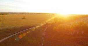 Vogelperspektive UHD 4K Mitten- in der Luftflug über gelbem ländlichem Feld und Schotterweg stock video