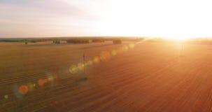Vogelperspektive UHD 4K Mitten- in der Luftflug über ländlichem Feld des gelben Weizens stock footage