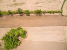 Vogelperspektive vom Brummen Reisfeld nach Erntespur der Fläche Stockbild