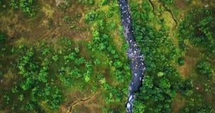 Vogelperspektive von Batnfjorden-Wald mit Fluss Verweisen Sie hinunter Ansicht über die Berge in Norwegen stock video