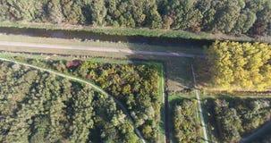Vogelperspektive von bunten B?umen des Herbstes im Park, die Niederlande stock video