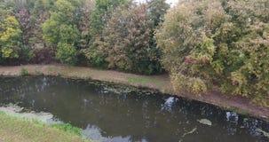 Vogelperspektive von bunten Herbstbäumen im Park, Dordrecht, die Niederlande stock footage