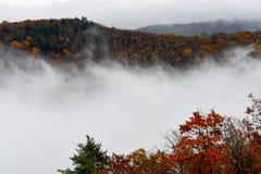 Vogelperspektive von den Gebirgswäldern versenkt in den Wolken während der Herbstsaison stockfotografie