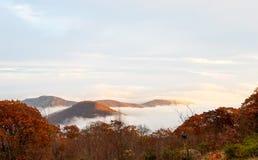 Vogelperspektive von den Gebirgswäldern versenkt in den Wolken während der Herbstsaison lizenzfreies stockfoto