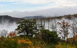 Vogelperspektive von den Gebirgswäldern versenkt in den Wolken während der Herbstsaison lizenzfreie stockfotografie