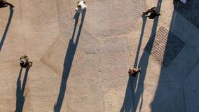 Vogelperspektive von den Leuten, die zum Büro austauschen stock footage