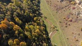 Vogelperspektive von einem kleinen Fluss, der entlang eine schöne Schlucht an einem warmen Herbsttag fließt stock footage