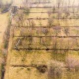 Vogelperspektive von einer Höhe von 100 Metern von den Entwässerungsgräben für ein Ackerland mit Wasser, das Bäume abläßt Stockbilder