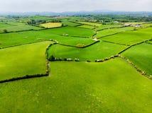 Vogelperspektive von endlosen üppigen Weiden und von Ackerland von Irland Schöne irische Landschaft mit Smaragdgrünfeldern und -w Stockbild