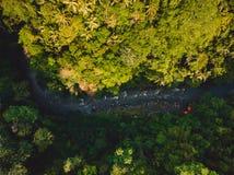 Vogelperspektive von Fluss mit Booten für das Flößen und von Dschungel in Bali stockbild
