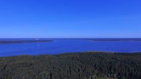 Vogelperspektive von Forest On Island On Lake Seliger, Russland stock video
