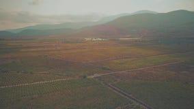 Vogelperspektive von Fruchtobstgärten und von Weinbergen in Sierra Nevada -Bergen Andalusien, Spanien stock footage