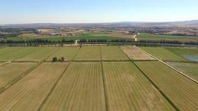 Vogelperspektive von geernteten Feldern stock video