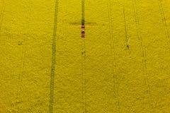 Vogelperspektive von gelben Vergewaltigungserntefeldern mit Traktor Stockbilder