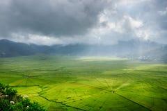 Vogelperspektive von grünen Lingko-Spinnen-Netz-Reis-Feldern mit Sonnenlicht-Durchdringen durch Wolken zum Feld mit dem Regnen Fl stockfotos