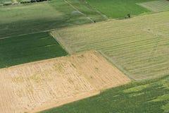 Vogelperspektive von Grünfeldern in der ländlichen Landschaft Lizenzfreies Stockbild