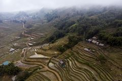 Vogelperspektive von gr?nen terassenf?rmig angelegten Reisfeldern und -geb?ude auf dem Tal an Cat Cat-Dorf in Sapa, lizenzfreie stockfotografie