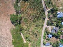 Vogelperspektive von Häusern, von Bäumen und von Straßen in der landwirtschaftlichen Nutzfläche Stockfotografie