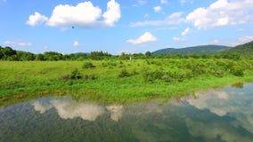 Vogelperspektive von Jesenica-Fluss stock footage