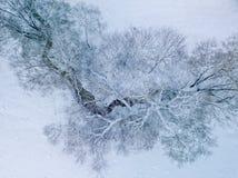 Vogelperspektive von kleinem Fluss am Wintertag stockfotografie