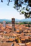 Vogelperspektive von Lucca, Italien Stockfotografie