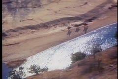 Vogelperspektive von Männern auf den Pferden, die neben Büffel-Fluss in Arkansas galoppieren stock footage