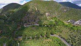 Vogelperspektive von schönen Bergen, von kurvenreicher Straße zwischen Bäumen und von Büschen stock footage