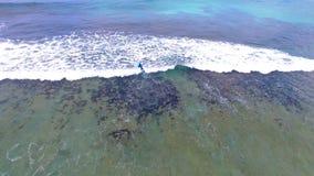 Vogelperspektive von Surfern, Baie Lazare Beach, Mahe Island, Seychellen 3 stock video footage