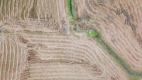 Vogelperspektivefliegen über Reisfeld nach Erntezeit in der Landschaft stock video
